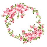 Beautiful, bright watercolor wreath with orchids. Illustration Stock Image