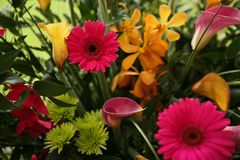 Bright flower arrangement close up of flowers Royalty Free Stock Images