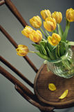 Still Life with Yellow Tulips Stock Photo