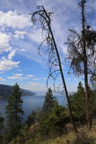 Canada- Mountain Resorts and views Royalty Free Stock Image