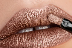 Beautiful bronze lips Royalty Free Stock Images