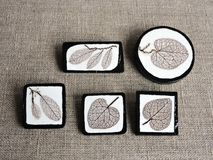 Beautiful brooch made using leaf skeletons and wood Stock Images