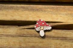 Beautiful brooch mushroom handmade jewelry Royalty Free Stock Images
