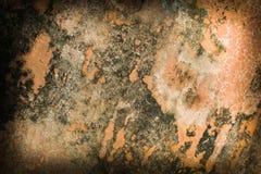 Beautiful brown background with elegant dark brown vintage grunge Stock Images