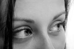 Beautiful Brown Eyes Stock Photos