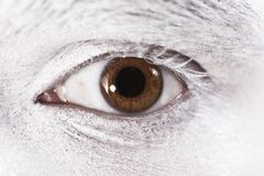 Beautiful brown eyes male Stock Image