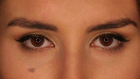 Beautiful brown eyes of young brunette woman stock video
