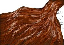 Beautiful brown hair Royalty Free Stock Photography