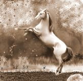 The Horse and the Enchanted Forest Sepia stock illustration