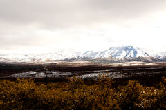 A Beautiful Brown Tundra Valley with Snowcapped Mountains. Shot above the snow line during fall in Alaska, this image features Denali valley tundra with Stock Image