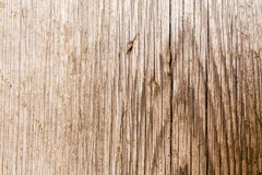 Beautiful brown wooden texture or background Royalty Free Stock Photography