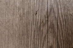 Beautiful brown wooden texture or background Royalty Free Stock Images