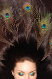 Beautiful brunet long hair decorated with peacock. Beautiful brunettes long hair decorated with peacock feathers Royalty Free Stock Photo