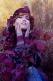 Beautiful brunette in the autumn light Stock Image