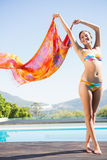 Beautiful brunette in bikini holding sarong up. On a sunny day Royalty Free Stock Image