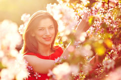 Beautiful brunette in the blossoming spring garden Stock Image