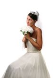 Beautiful Brunette Bride Stock Images