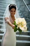Beautiful Brunette Bride Stock Images