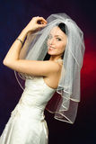 Beautiful brunette bride Stock Photography