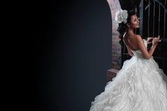 Beautiful brunette bride in black background. Stock Photo
