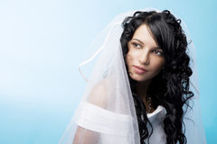 Beautiful brunette bride on a blue background Stock Image