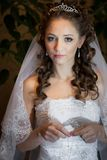 Beautiful brunette bride Royalty Free Stock Photo