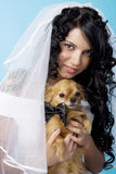 Beautiful brunette bride with a dog Royalty Free Stock Photos