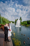 Beautiful brunette bride and elegant stylish groom with true feelings near a sunny lake Royalty Free Stock Images