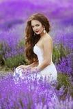 Beautiful brunette bride posing in Lavender Field in the summer, Stock Image