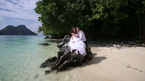 Beautiful brunette bride sitting on rock embraces groom. Beautiful brunette bride sitting on rock embraces and kisses groom at background of beach sea and tree stock video footage