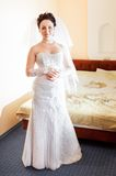 Beautiful brunette bride Royalty Free Stock Photography
