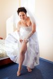 Beautiful brunette bride Royalty Free Stock Image