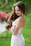 Beautiful brunette Bride Wedding Portrait, woman with long wavy. Hair wearing in white lace wedding dress posing in green park Stock Photos