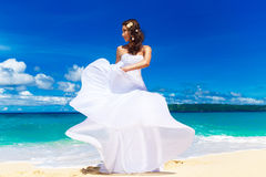 Beautiful brunette bride in white wedding dress with big long wh Stock Image