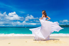 Beautiful brunette bride in white wedding dress with big long wh Stock Photos
