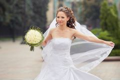 Beautiful brunette bride Royalty Free Stock Photos