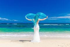 Beautiful brunette bride in white wedding dress Stock Photos