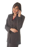 Beautiful brunette businesswoman Stock Images