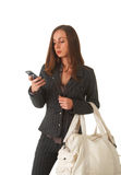 Beautiful brunette businesswoman Royalty Free Stock Image