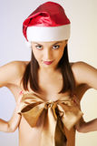 Beautiful brunette christmas  girl Stock Images