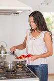 Beautiful brunette cooking Stock Photos