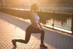 Beautiful brunette doing fitness royalty free stock photography