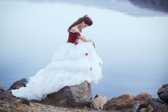 Beautiful brunette in a dress Royalty Free Stock Photo