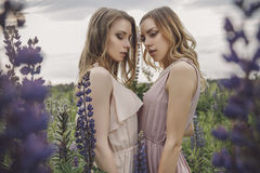 Beautiful brunette fit slim fragile two women with clear flawles. S skin and waved hair in sensual summer dress in the middle of meadow lupins field on a sunset Stock Photography