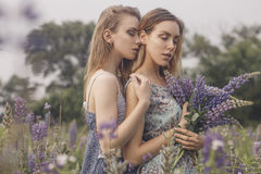 Beautiful brunette fit slim fragile two women with clear flawles. S skin and waved hair in sensual summer dress in the middle of meadow lupins field on a sunset Royalty Free Stock Photo