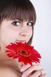 Beautiful brunette girl. Portrait of beautiful brunette girl with red gerbera flower royalty free stock image