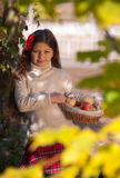 Beautiful brunette girl with basket of apples Stock Photo