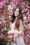 Beautiful brunette girl bride in boudoir lace transparent dress smile near the tree blossoms with pink flowers. Beautiful cute brunette girl bride in boudoir Stock Photos