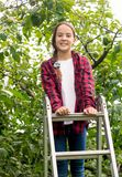 Beautiful brunette girl in checkered shirt standing on top of stepladder at orchard. Brunette girl in checkered shirt standing on top of stepladder at orchard Stock Images
