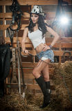 Beautiful brunette girl with country look, indoors shot in stable, rustic style. Attractive woman with cowboy hat, denim shorts. And tight white top, American Stock Photo